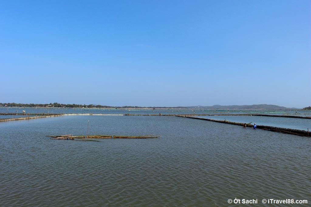 Trời nước xanh ngắt mộ màu ở Đầm Ô Loan, Top 10 địa điểm du lịch Phú Yên